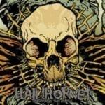 Hail!Hornet julkaisi albumin tiedot