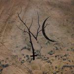 Nettlecarrier julkaisi uuden albuminsa tiedot