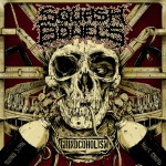 Squash Bowelsilta uusi albumi heinäkuussa