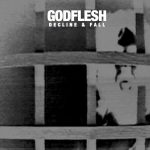 Godflesh - Decline and Fall (2014)