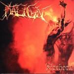 Maign-Fireborn