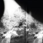 Kuuntele uusi Godspeed You! Black Emperor albumi