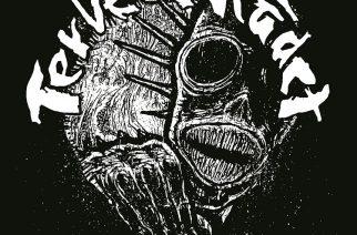 Terveet Kädet – Lapin Helvetti
