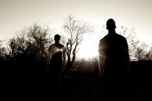 Tempel julkaisee uuden albumin