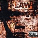 Flaw Through The Eyes 2001