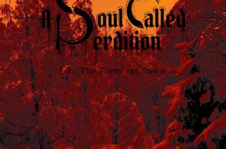 A Soul Called Perdition – Into The Formless Dawns