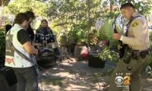Kalifornialainen poliisi saapui nuorten bändiharjoituksiin ja alkoi jammailemaan heidän kanssaan