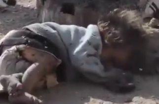 System Of A Downin rumpali pyytää faneilta apua: haluaa adoptoida syyrialaislapsen