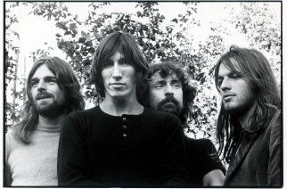 Pink Floydille mielenkiintoinen kunnia: äänekäs uusi katkarapulaji nimettiin yhtyeen mukaan