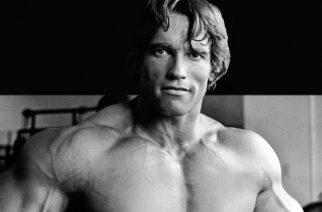 Arnold Schwarzenegger aloitti sanasodan Nickelbackin kanssa: bändin kuittaus osui toimintatähteä arkaan paikkaan
