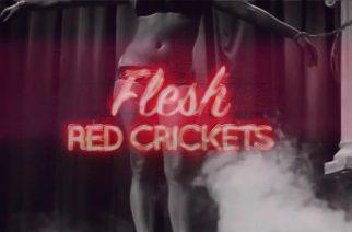 Red Crickets sai levytyssopimuksen Australiasta – uusi single ulos perjantaina