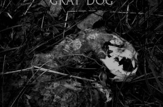 """Gray Dog - """"The Deal"""""""