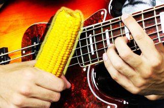 Miltä Korn kuulostaa maissilla soitettuna? – YouTube-basisti Davie504 näyttää mallia
