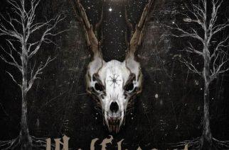 """Luontometallia laatutakuulla – arviossa Wolfheartin neljäs albumi, """"Constellation Of The Black Light"""""""