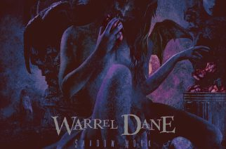 "Laulajan testamentti – arviossa Warrel Danen ""Shadow Work"""