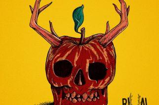 """Liverpoolilaisduo Rival Bones synnytti väkevää rokkia """"Strangefruit""""-EP:lle"""