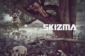 """Pelottavan nopeaa kehitystä: SkiZman """"Anthrovoid"""" on hauskaa, tarttuvaa ja kaoottista modernia metallia"""