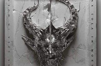 """Matka tyyneyden tyyssijaan – arvostelussa Demon Hunterin """"Peace"""""""