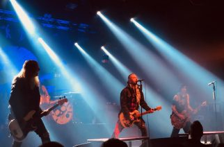 Backyard Babies - The Circus