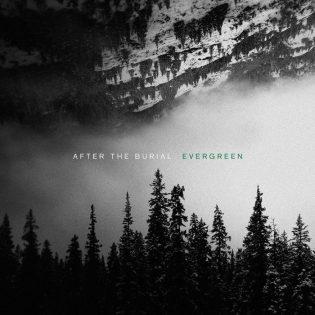 """After The Burialin """"Evergreen"""" tuskin nousee ikivihreän albumin asemaan, mutta se pysyy uskollisena yhtyeen tyylille"""