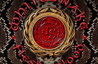 """Kuningasmatelijan uran komea päätösalbumi? – Arviossa Whitesnaken """"Flesh & Blood"""""""