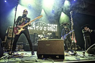 Psychobillyä, neo-rockabillyä ja flamencorea: katso kuvat 19th Tawastia Stomp 2019 -festivaalista