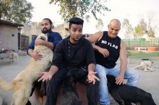 """Rakkaudesta eläimiin: Bloodywood julkaisi tunteikkaan """"Yaad""""-kappaleen musiikkivideon kera"""