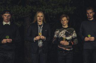 (c) Niko Sihvonen Photography