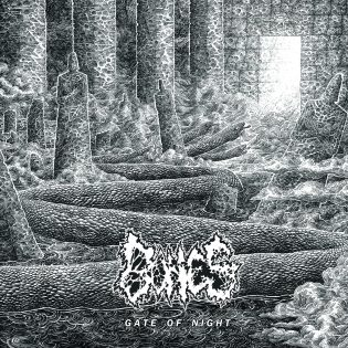 """Bonesin EP """"Gate of Night"""" on vähän liikaa sinne tänne polveilevaa dödistä"""