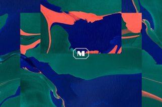 """Potentiaalia nousta seuraavaksi indie-lemmikiksi: arvostelussa Mantarayn kypsä """"In Everything"""""""