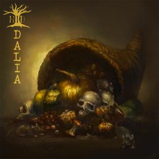 """Lupaava tulokas kotimaisella djent-kentällä: arvostelussa Nation In Despairin debyyttialbumi """"Dalia"""""""