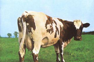 """""""Pelkistettyä paisuttelua"""" – klassikkoarvostelussa Pink Floydin 50-vuotias """"Atom Heart Mother"""""""