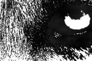 Metallia Pohjanmaalta – Dark Sun Risesilta uusi kappale
