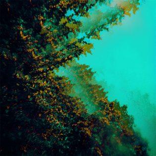 """Näyttävä sooninen ilotulitus – arvostelussa Polymoonin katarttinen debyyttialbumi """"Caterpillars of Creation"""""""