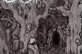 """Elvenscroll osoittaa olevansa lupaava lisäys kotimaiselle folk metal -kentälle debyyttijulkaisullaan """"Never to be Mourned"""""""