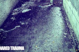 The Black Dahlia Murderin ja The Facelessin entisistä jäsenistä koostuva Shared Trauma julkaisi ensimmäisen kappaleensa